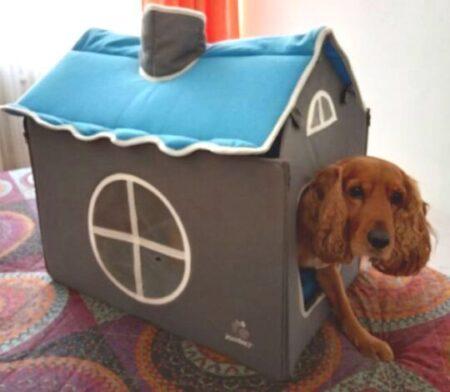 casas para perros de tela