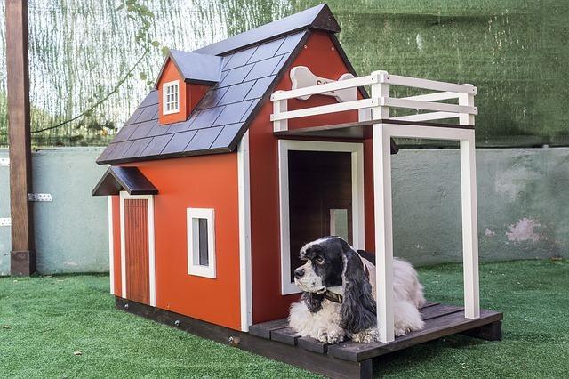 casas para perros de plastico