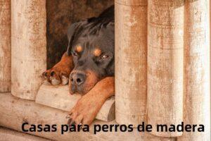Casas para perros de madera