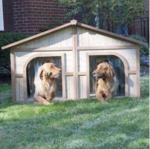 casas para 2 perros
