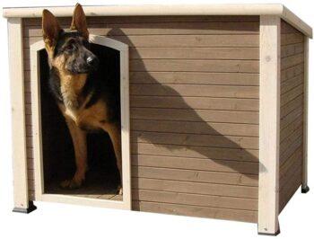 casetas de perro para invierno