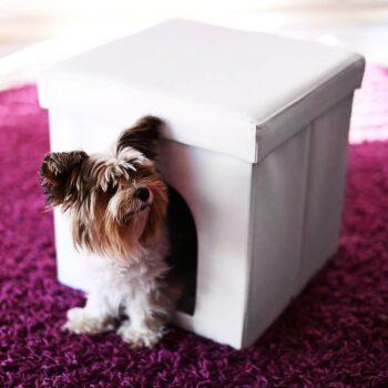 casitas para perros yorkshire