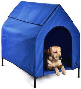 casas para perros labradores